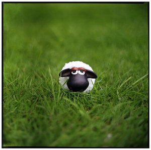 shaun__the_black_headed_sheep_by_lorseau